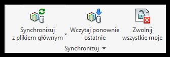 Synchronizacja Revit
